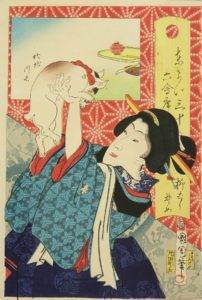 Geisha and a cat